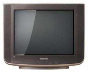 Samsung CS-21B500HL